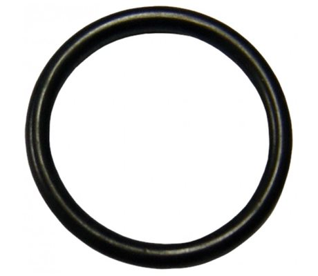 Rubber O-Ring 9.2003